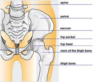 genunchiul este rănit. comun