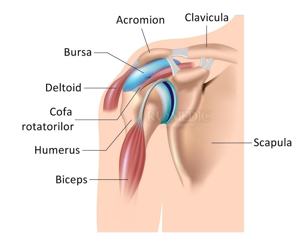 de ce articulația doare pe vreme