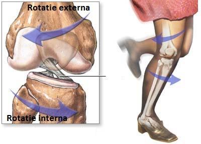 pregătire pentru inserția în articulația genunchiului