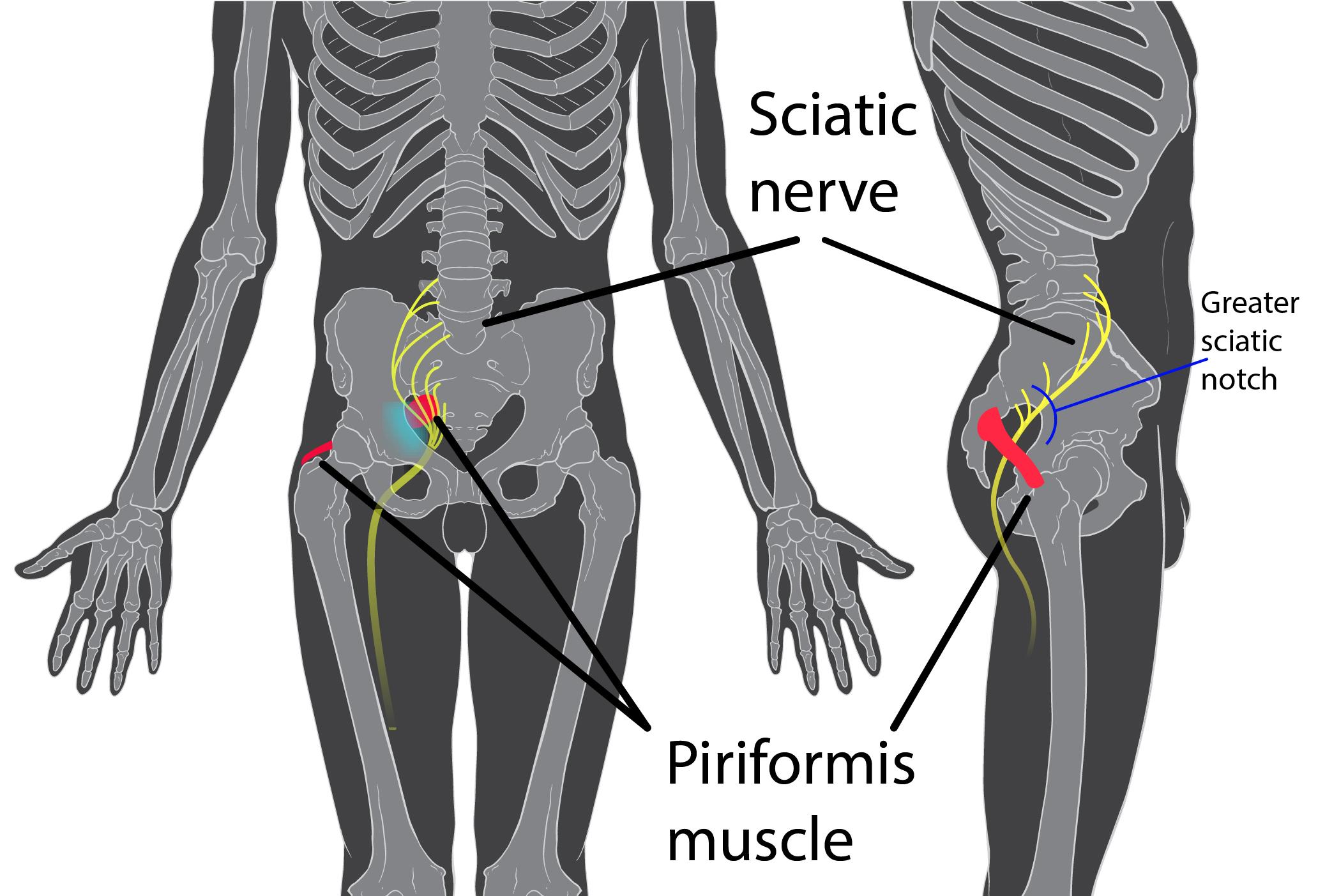 durere de șold ce diagnostic