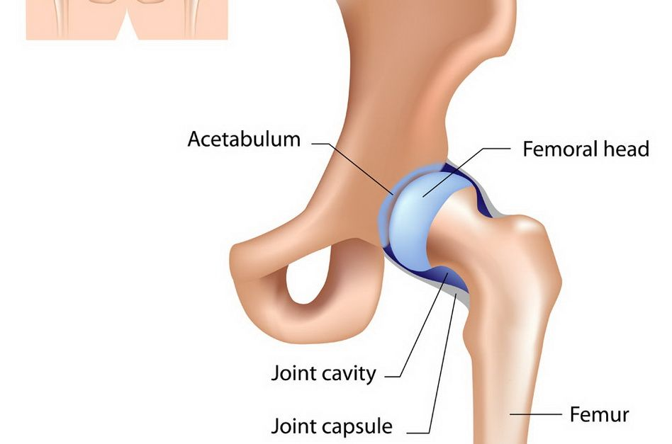 tratamentul bolilor articulației șoldului