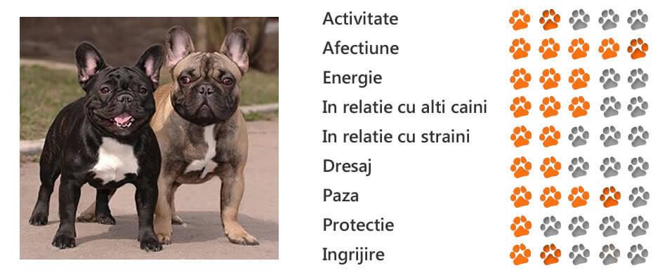 Boala Bulldogului francez