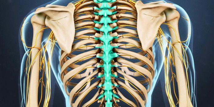 boli distrofice ale articulațiilor și ale coloanei vertebrale fisurarea articulațiilor provoacă durere