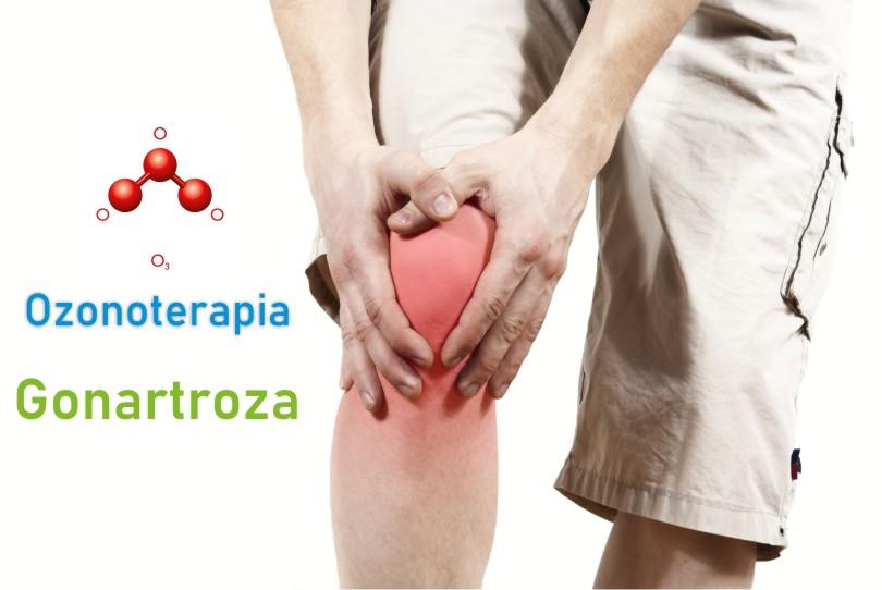 dureri musculare articulare