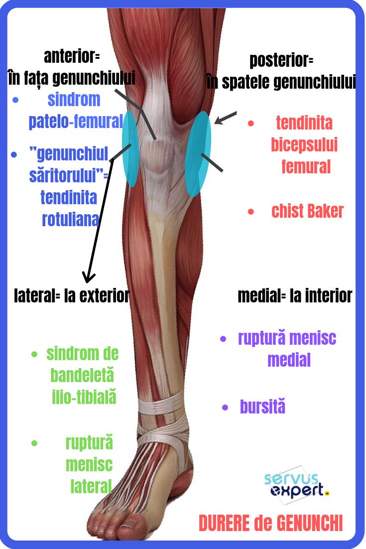 durere cronică în articulațiile genunchiului