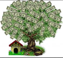 tratamentul în comun al copacilor de bani