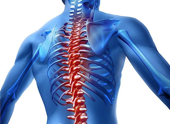 durere la nivelul articulațiilor și coloanei vertebrale