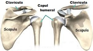 răni și se prind articulațiile umărului dureri articulare și tulburări intestinale