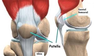 praf antiinflamatoare dureri articulare în timpul gua