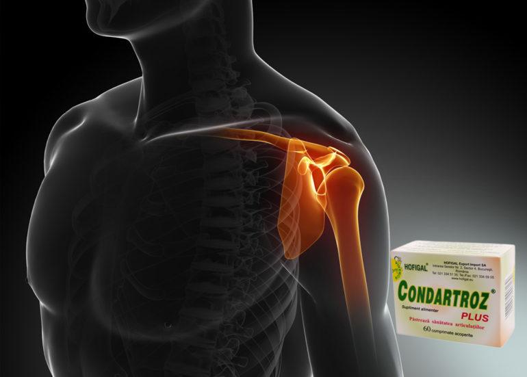proprietăți benefice ale glucozaminei și condroitinei umflarea în partea din spate a genunchiului
