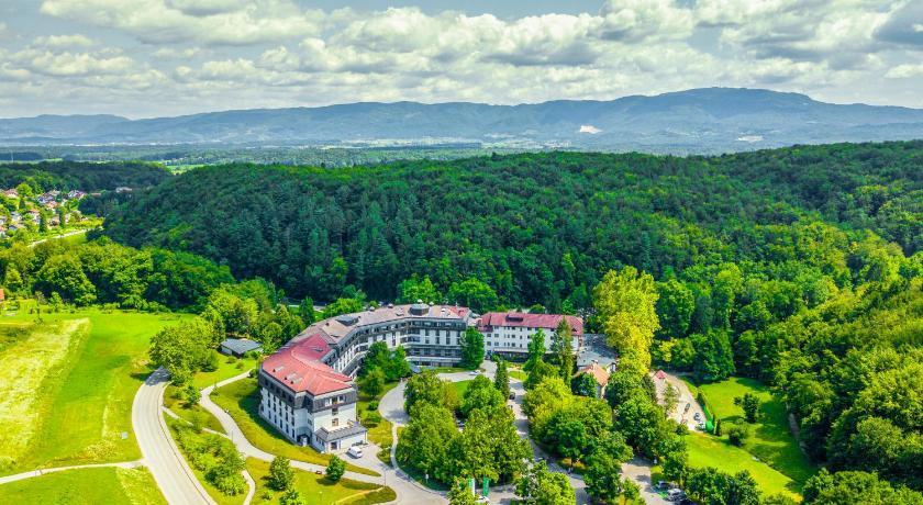 Recenzii tratamentul comun Slovenia. Durere articulară a tratamentului degetului mijlociu