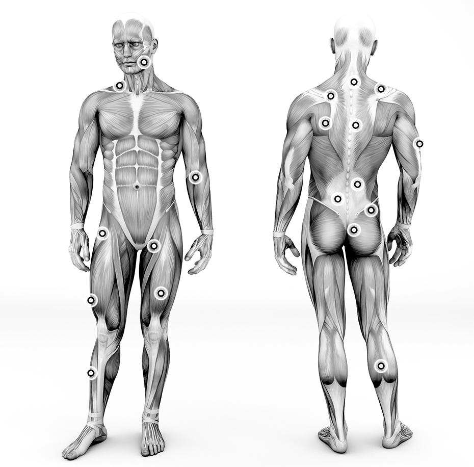 Durerile musculare (Mialgii ): Cauze, afectiuni asociate, tratament | infostraja.ro