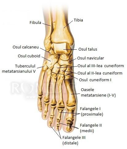 băi de sare pentru dureri articulare cine să contacteze dacă articulația doare