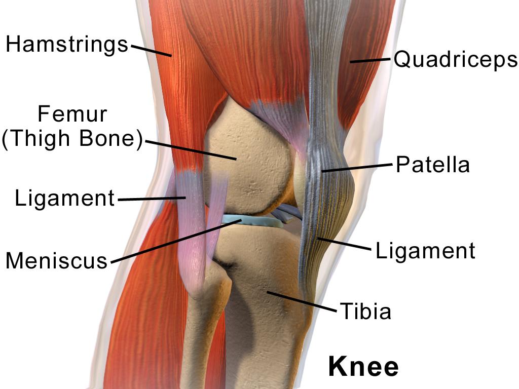 genunchiul a zburat din articulație este posibil să restaurați articulația cu artroza