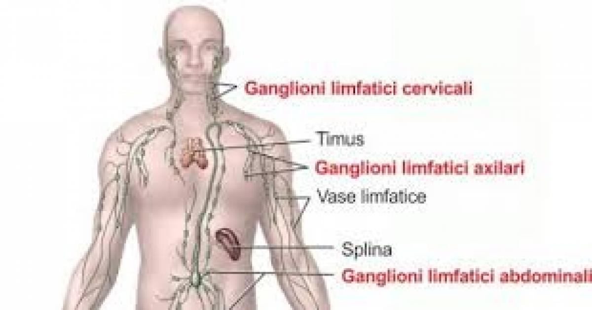 Inflamația ganglionilor limfatici inghinali: cauze, tratament, fotografie - Hipertensiune November