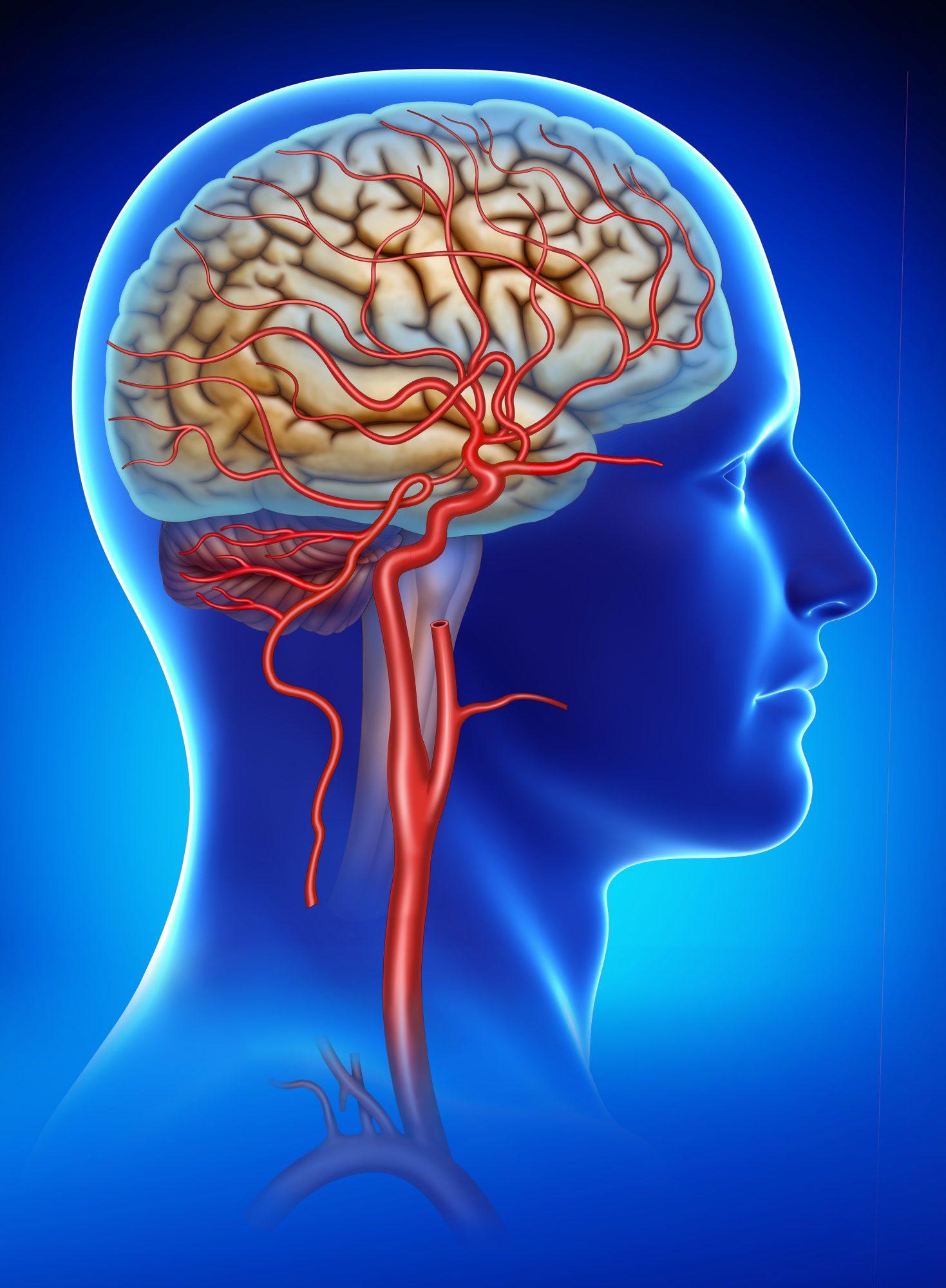 spasme ale articulațiilor tratamentului creierului ce durere după înlocuirea șoldului