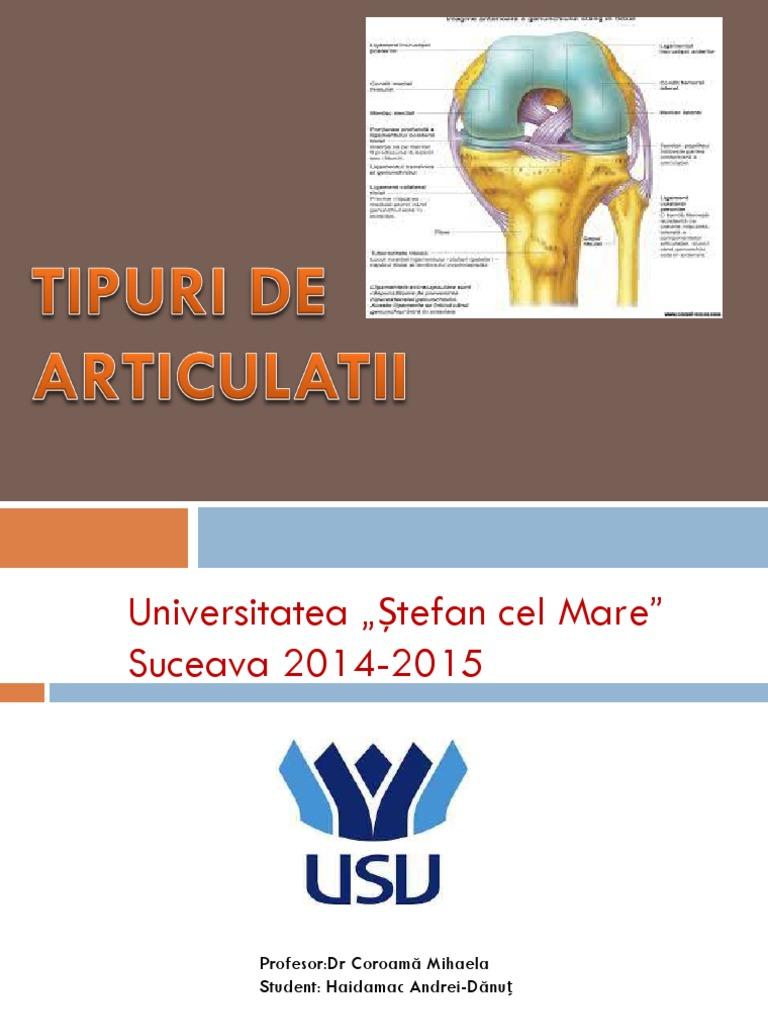 tipuri de descriere a bolii articulare artroza articulațiilor umărului 1 grad