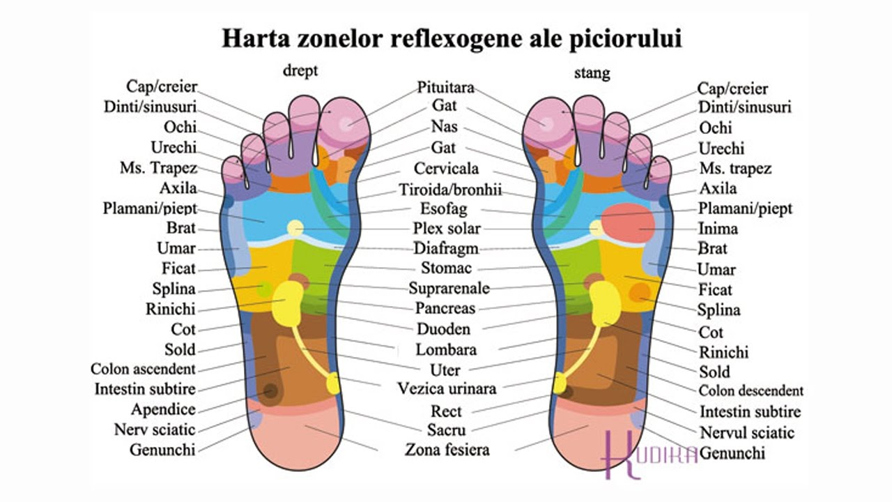 Tratamentul artrozei cu reflexoterapie