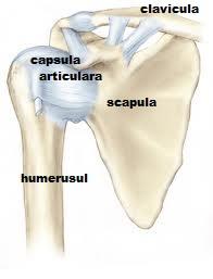 antrenament pentru durerea articulației umărului