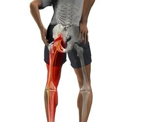 dureri de șold cu căderea picioarelor