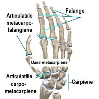 articulațiile rănesc cu presiune stadiile inflamatiei articulare